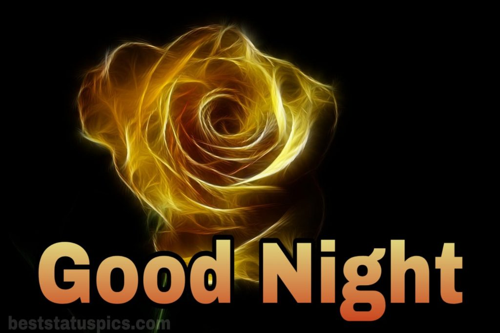 Good night yellow rose wallpaper