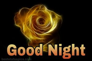 Good night yellow rose wallpaper
