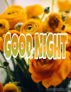 Good night yellow rose images for friendship