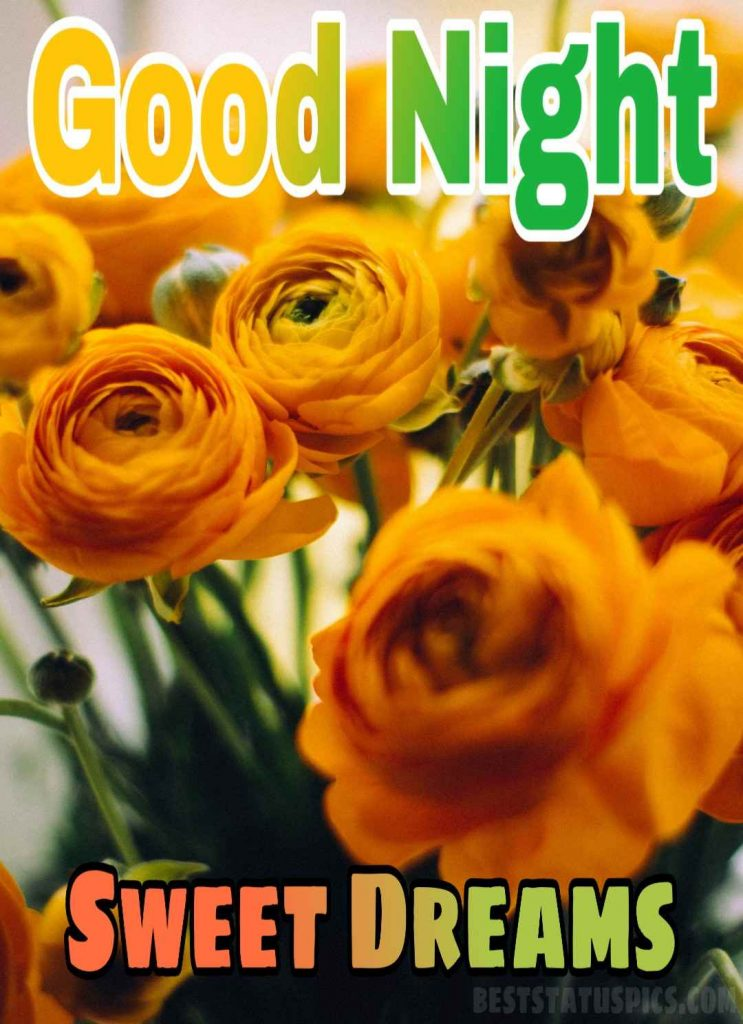 Good night yellow rose flowers images