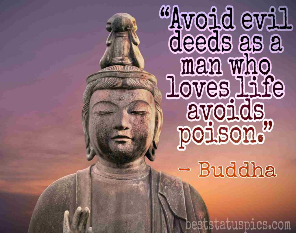 buddha quotes on life and love image