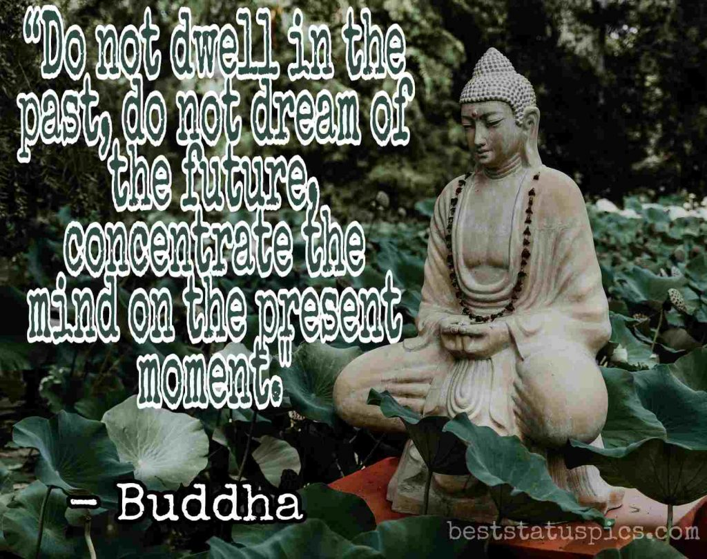 buddha quotes on life image