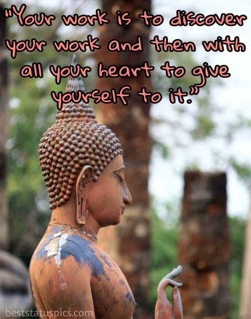 buddha quotes of life image