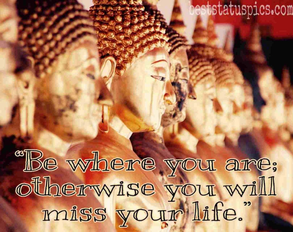 buddha quotes for life image