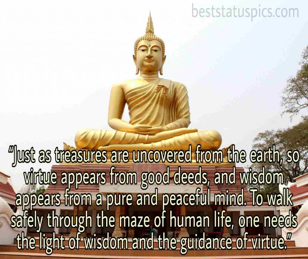 buddha quotes about life images new