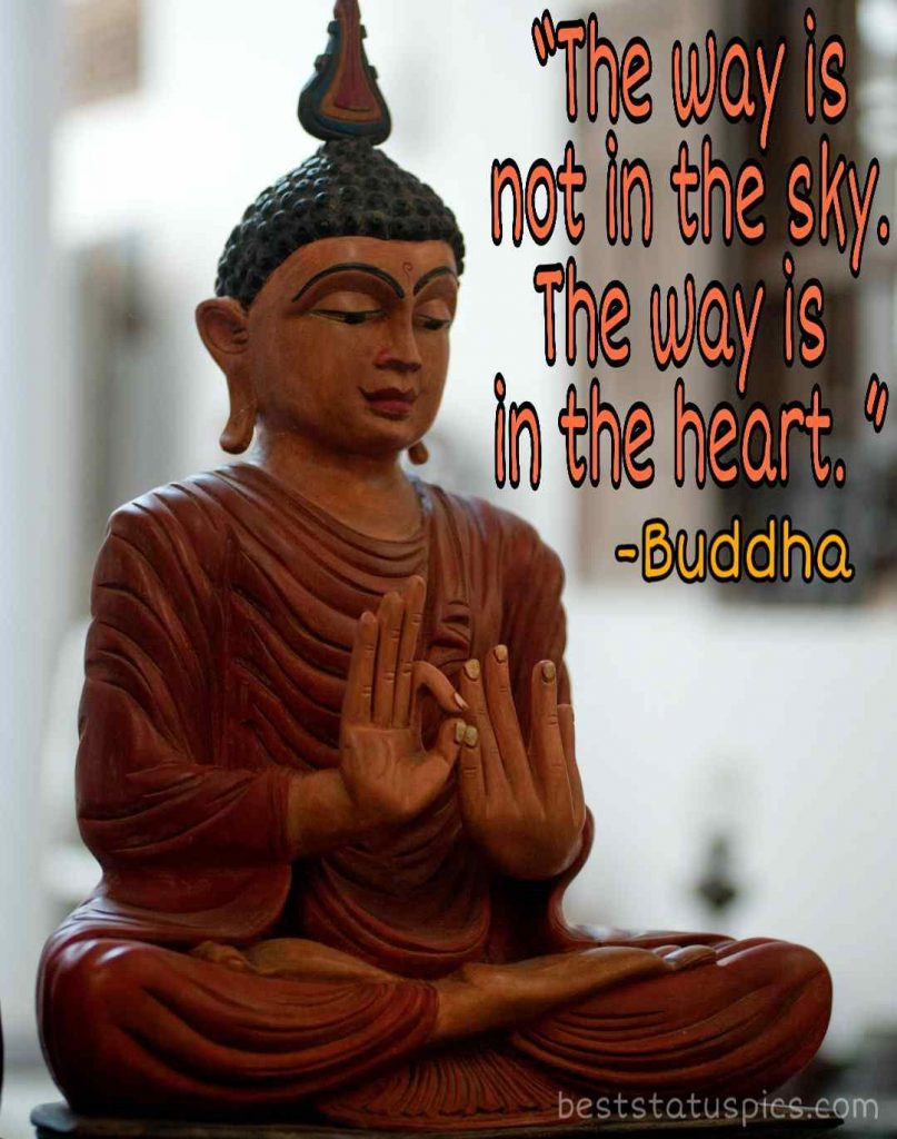 Buddha quotes about love and life image
