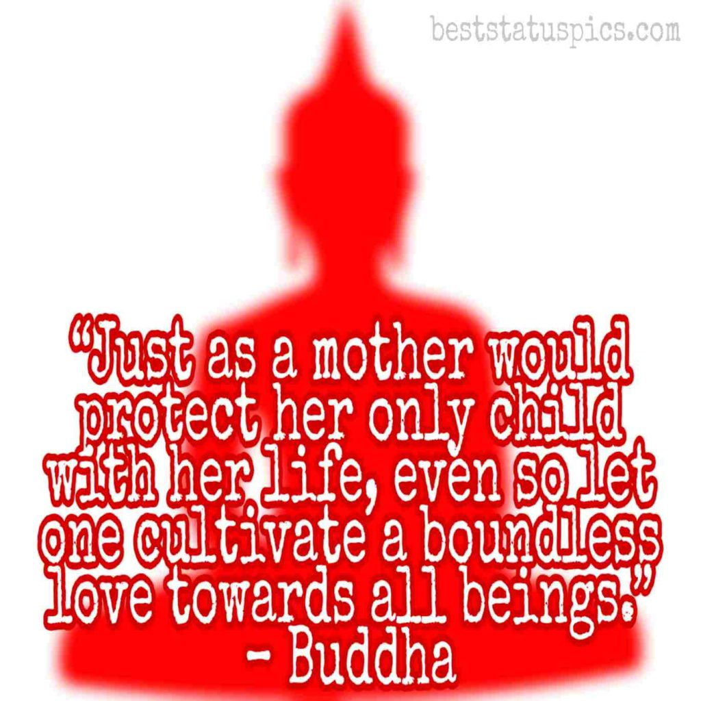 Buddha quotes on love and like images