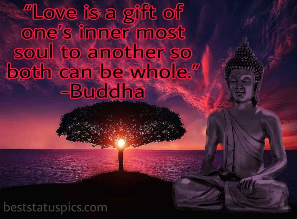 Buddha quotes love and like image