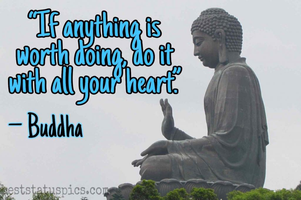 Buddha quotes on love and life image