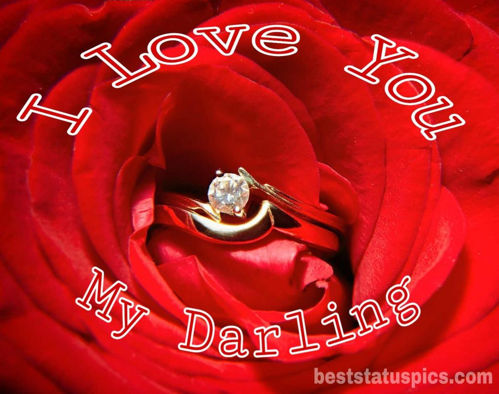 i love you darling dp image with a rose