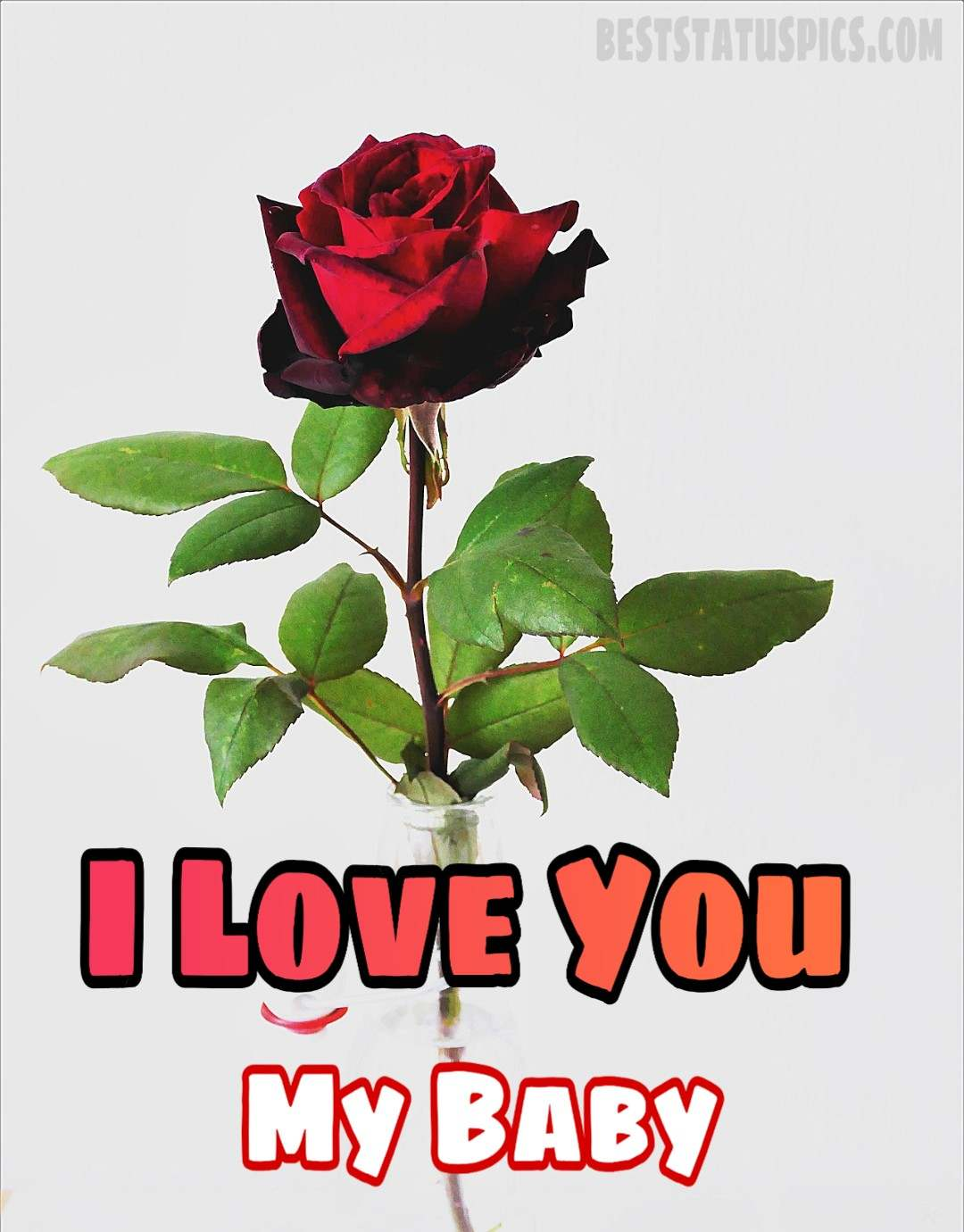 New I Love You Whatsapp Dp Pictures Hd Images Photo Best Status Pics