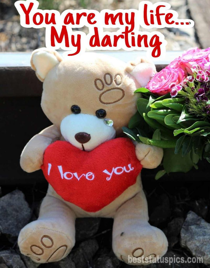 i love you dp pic for darling