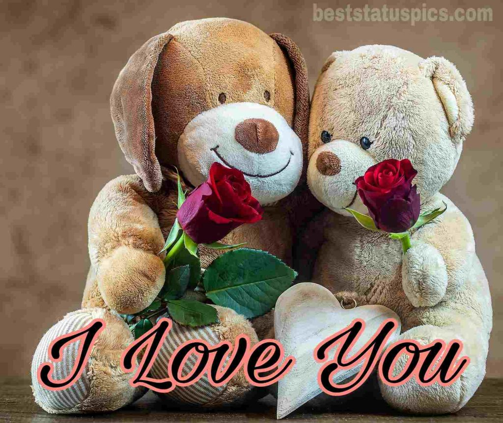 i love you my darling whatsapp dp