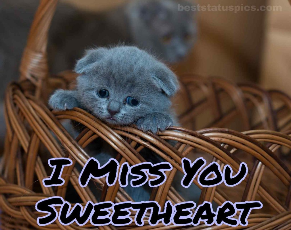 i miss you sweetheart dp for whatsapp