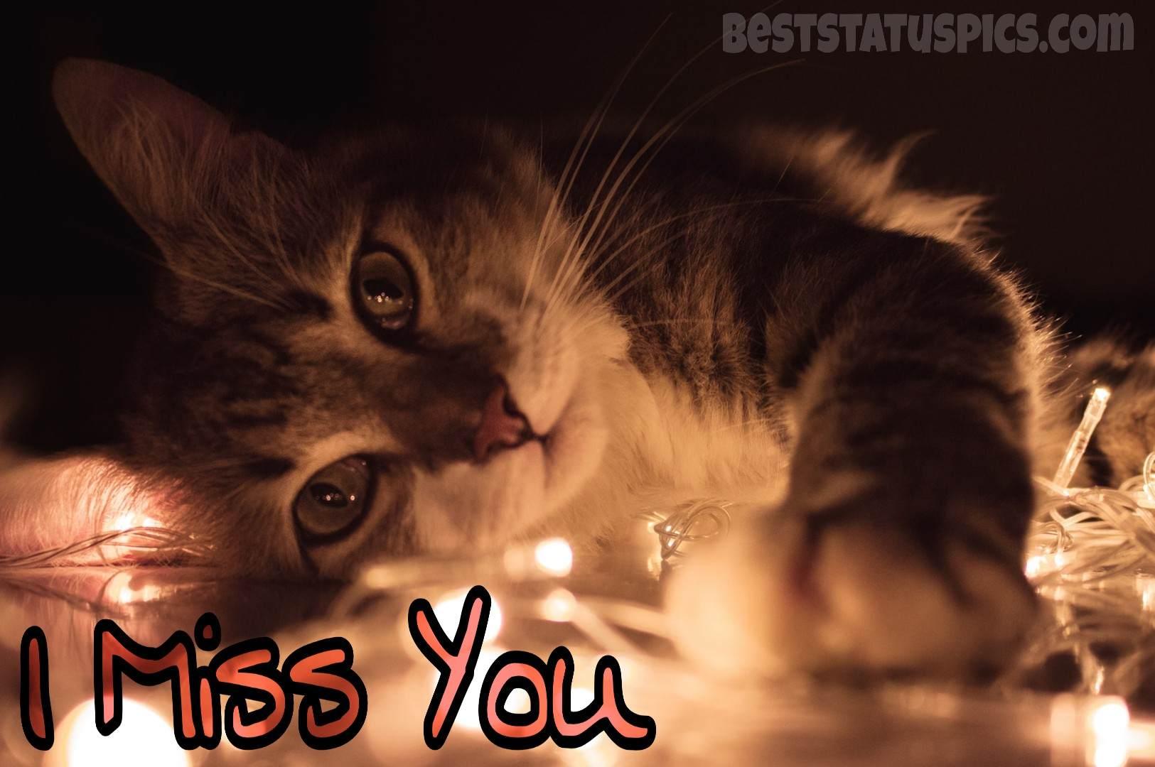 Cute I Miss You Whatsapp Dp Pics Hd Images Photo Best Status Pics