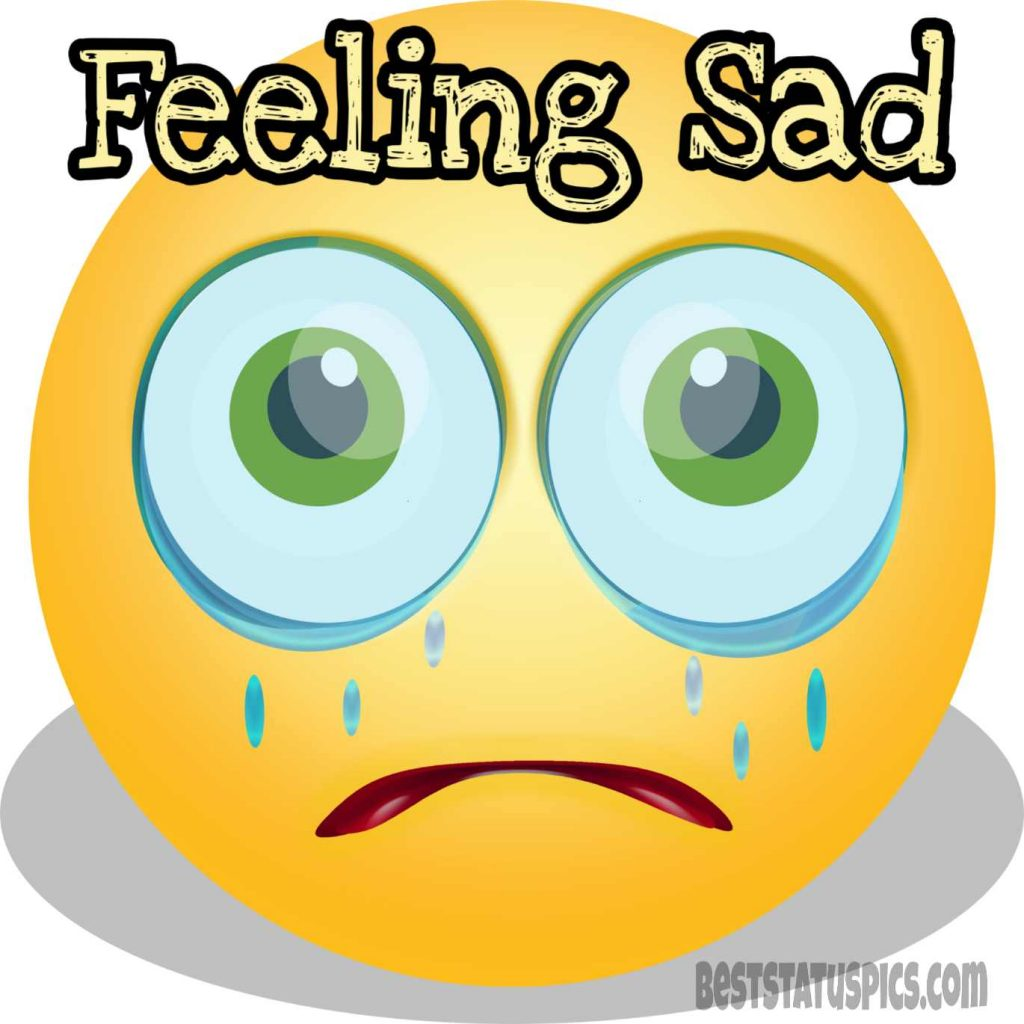 feeling sad dp for whatsapp quotes with crying emoji