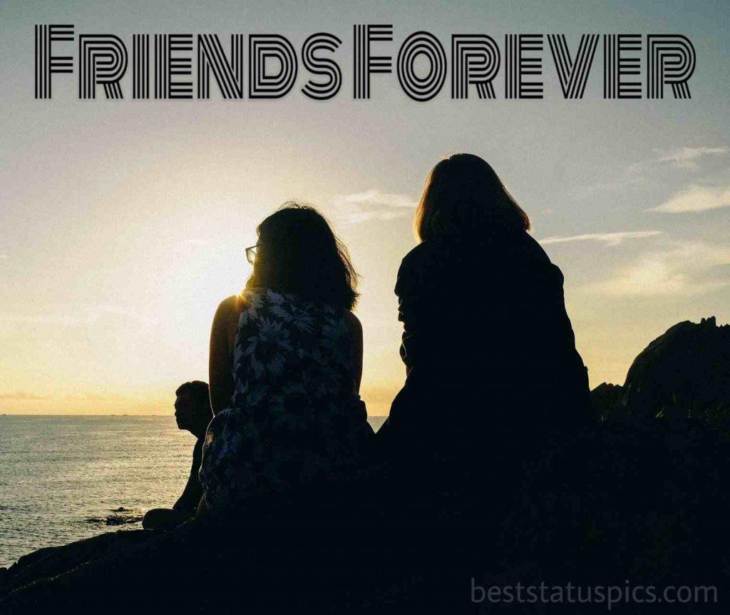 best friend forever dp whatsapp