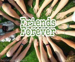 whatsapp group dp for friends forever download