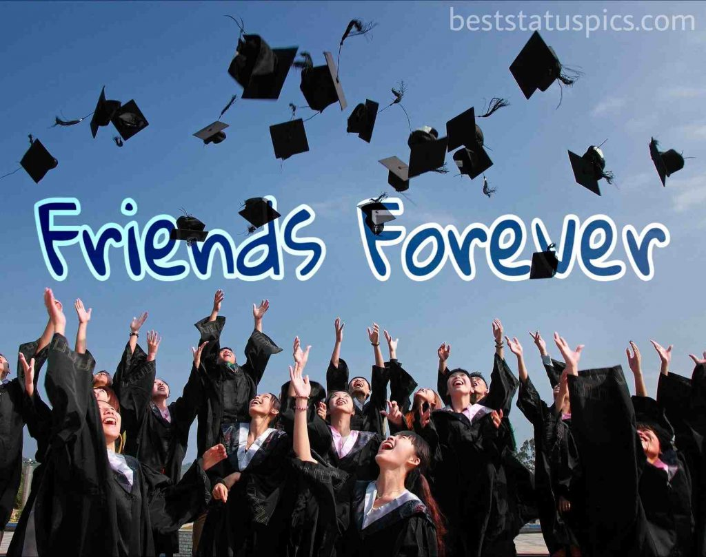friends forever wishes with graduate and hat and cap pics for whatsapp dp