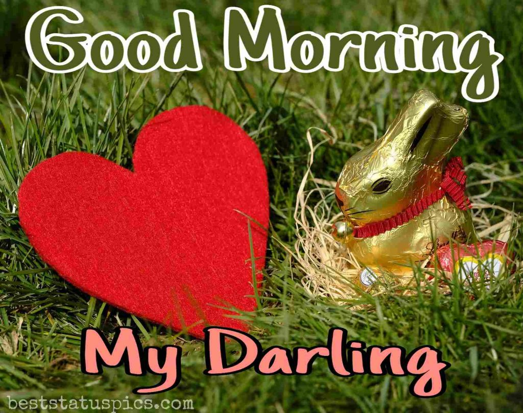 good morning my darling with love and rabbit image for girlfriend download