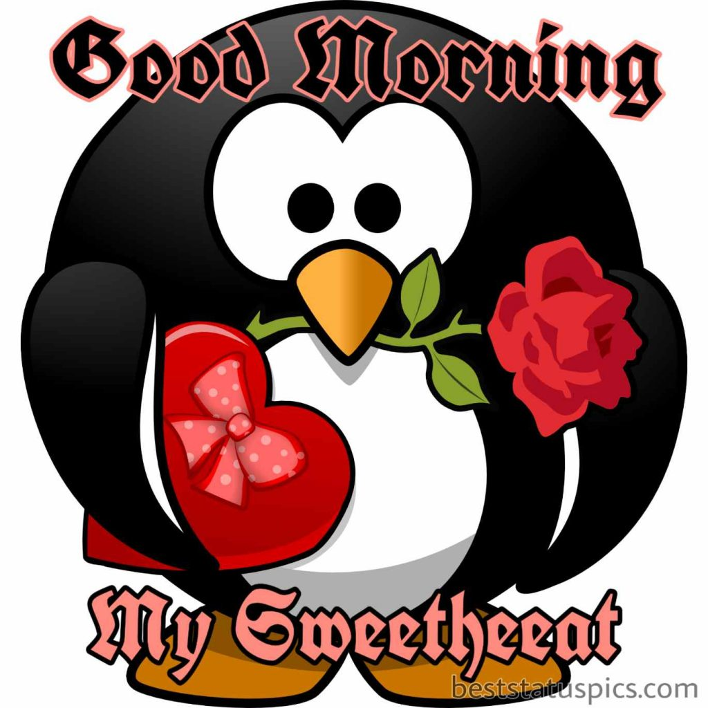 good morning my sweetheart to girlfriend with rose and love heart gift by penguin