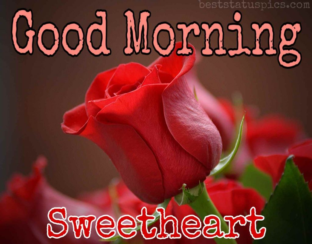 Good morning sweetheart HD image for girlfriend with red rose
