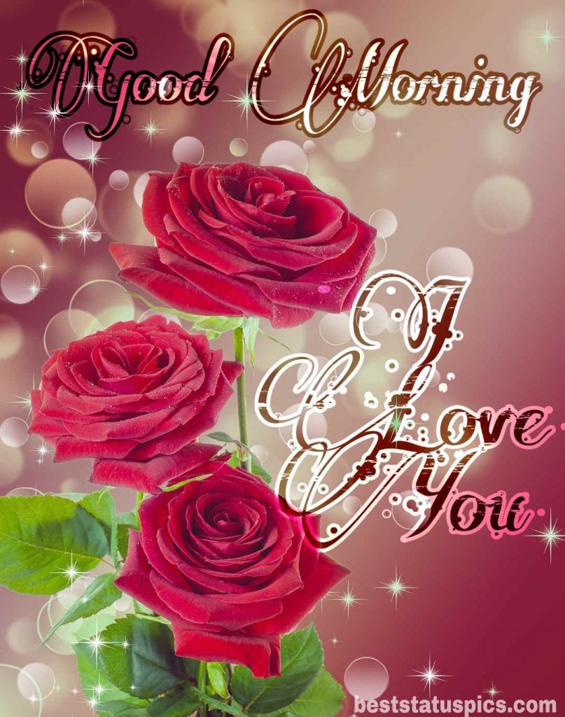 beautiful good morning i love you image with red rose for girlfriend