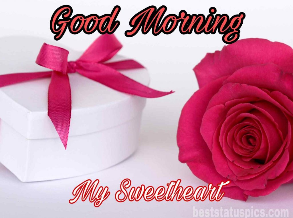good morning sweetheart quotes pic with red rose and love gift box