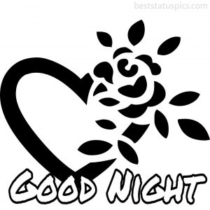 good night with heart rose