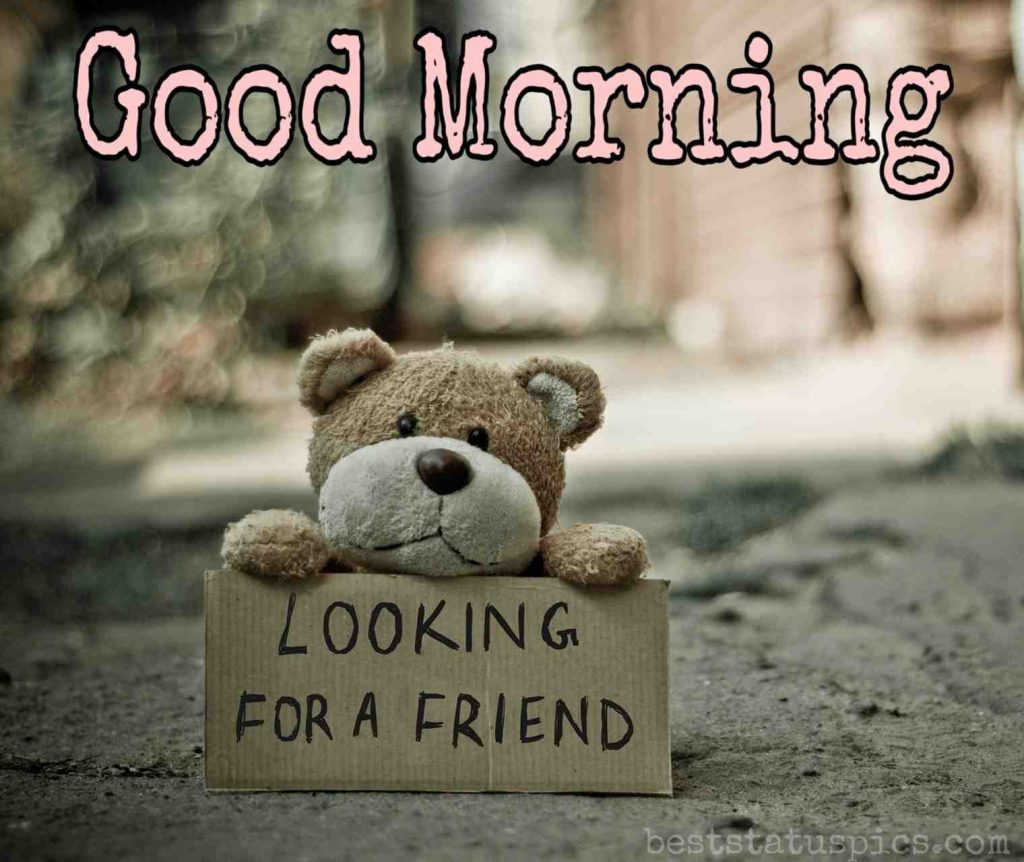 sad good morning looking for a friend pic with a teddy bear