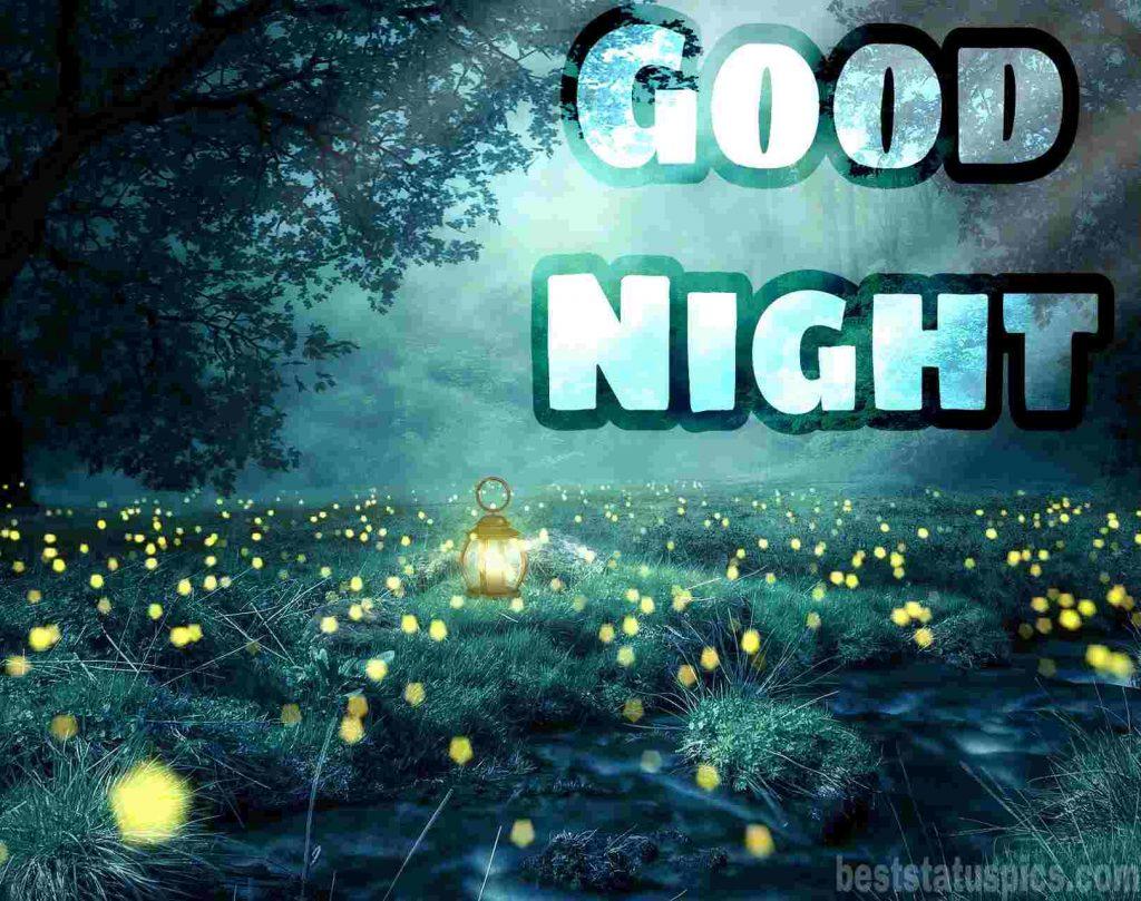 good night image in cartoon nature