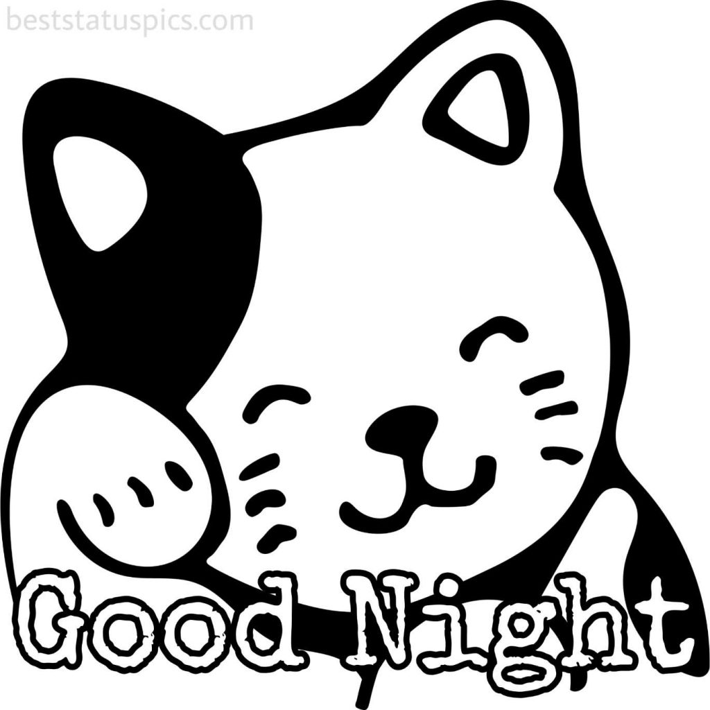 good night cute cat cartoon pic