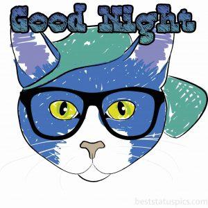 good night cat cartoon image