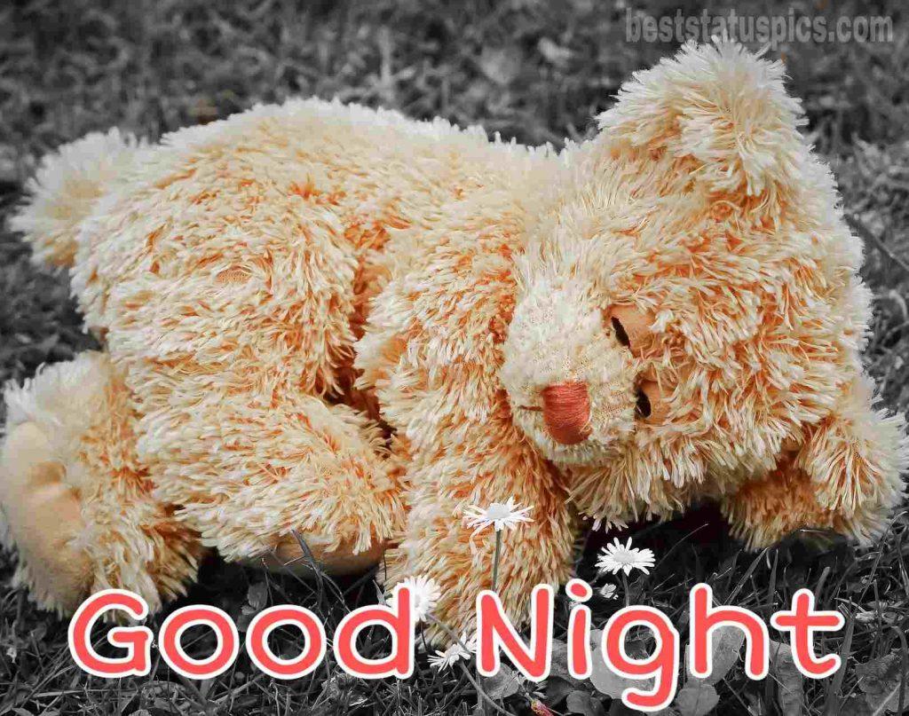 teddy bear images saying good night