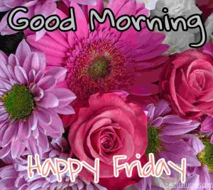 good morning friday images and quotes with beautiful flowers, rose images HD