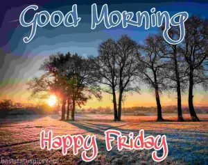 good morning happy friday with nature and sunrise image