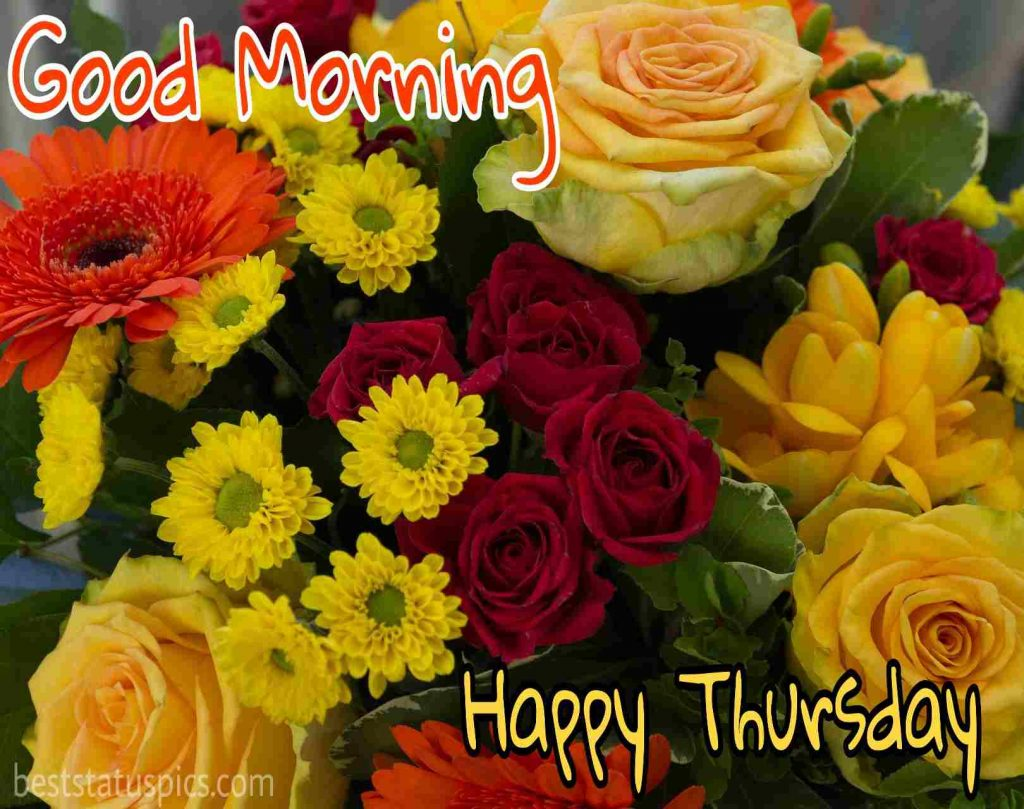 cute good morning thursday flowers HD images