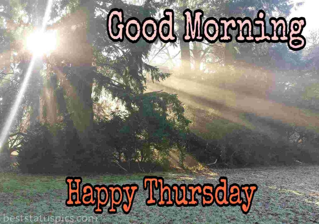 good morning nature with happy thursday wishes image HD