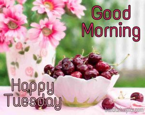 good morning tuesday wishes with cherries and flowers picture