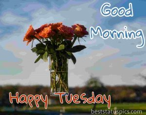 good morning happy tuesday quotes and images HD with red rose and flowers