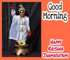 Good Morning Happy Krishna Janmashtami 2020 Image with lord krishna