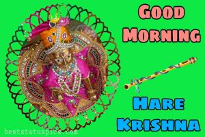 hare krishna good morning image HD with gopala
