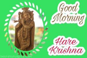 beautiful good morning hare krishna image