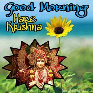 Best good morning hare krishna god image for Whatsapp