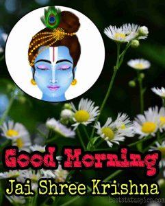 Jai shree krishna good morning wishes pic for Whatsapp