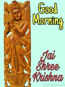 good morning Jai shree krishna status image