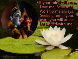 radhe krishna love quotes in english for Whatsapp profile status with lotus flower images