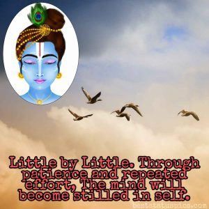 little krishna quotes in english with photo