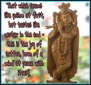 jai shree krishna status for Whatsapp DP