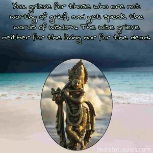 krishna god status in english for Whatsapp DP